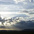 Sunset On The Mara by Michele Burgess