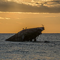 Sunset On The Wreck Of The Concrete Ship Atlantus by Bill Cannon