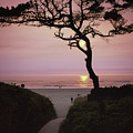 Sunset On The Zen Path by HW Kateley