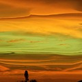 Sunset Orange And Green by Florene Welebny