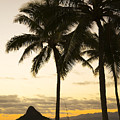 Sunset Over Chinamans Hat by Dana Edmunds - Printscapes