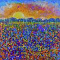 Sunset Over Flower Field by Maxim Komissarchik