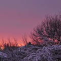 Sunset Over Fresh Snow by Bill Driscoll
