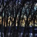Sunset Over North Pond by John Meader