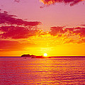Sunset Over The, Atlantic Ocean, Cat by Panoramic Images