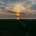 Sunset Over The Dunes  by Pravin  Sitaraman
