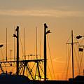 Sunset Over The Fleet by Louis Dallara