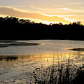 Sunset Over The Marsh by Suzanne Gaff