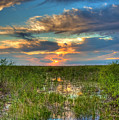Sunset Over The River Of Grass by William Wetmore