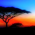 Sunset Over The Serengeti by Scott Kemper