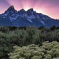 Sunset Over The Tetons by Vincent Bonafede