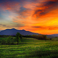 Sunset Pasture by Kevin Senter