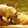 Sunset Rhino by Brian Kesinger