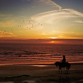 Sunset Ride by Diane Schuster