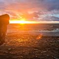 Sunset by Ryan Scott