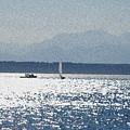 Sunset Sailboats  by Carol  Eliassen