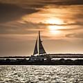 Sunset Sailing  by Debra Forand