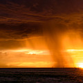 Sunset Shower by Paul Moore