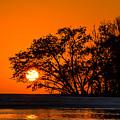 Sunset Sillouette by Robert McKay Jones