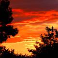 Sunset Sky by Anthony Brito
