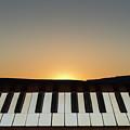 Sunset Sonata by David Gordon