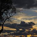 Sunset Study 1 by Angela DeFrias