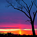 Sunset Sundog  by Ricky L Jones