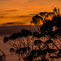 Sunset /torrey Pines Image 2 by Bruce Pritchett