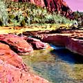 Sunset Zion National Park by Bob and Nadine Johnston