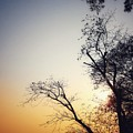 Sunset3 by Anupam Mukherjee