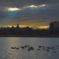 Sunset,lake, by Alexander Fuza
