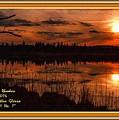 Sunsettia Gloria Catus 1 No. 1 L A. With Decorative Ornate Printed Frame. by Gert J Rheeders