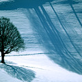 Sunshine And Shadows - Winterwonderland by Susanne Van Hulst
