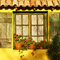 Sunshine And Shutters by Bel Menpes