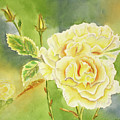 Sunshine And Yellow Roses by Kathryn Duncan