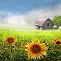 Sunshine by Debra and Dave Vanderlaan