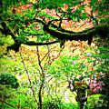 Sunshine In The Garden by Carol Groenen
