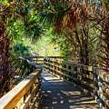 Sunshine On The Boardwalks by Debra and Dave Vanderlaan