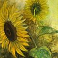 Sunworshipper II by Sandy Clift