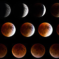 Super Blood Moon Eclipse by Robert J Caputo
