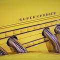 Super Charged by LeeAnn McLaneGoetz McLaneGoetzStudioLLCcom