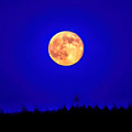 Supermoon Aglow - Painted by Black Brook Photography