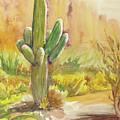 Superstition Saguaro by Melanie Harman