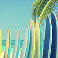 Surfboards by Delphimages Photo Creations