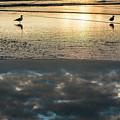 Surf Reflection by Robert Potts