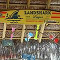 Surf This Tiki Hut by Tania Vojvodic