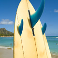 Surfboard by Dana Edmunds - Printscapes
