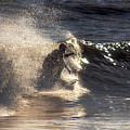 Surfs Up In Socal by Clayton Bruster