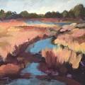 Surprise Wetland by Rachel Sunnell