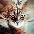 Surreal Cat by Nannie Van der Wal